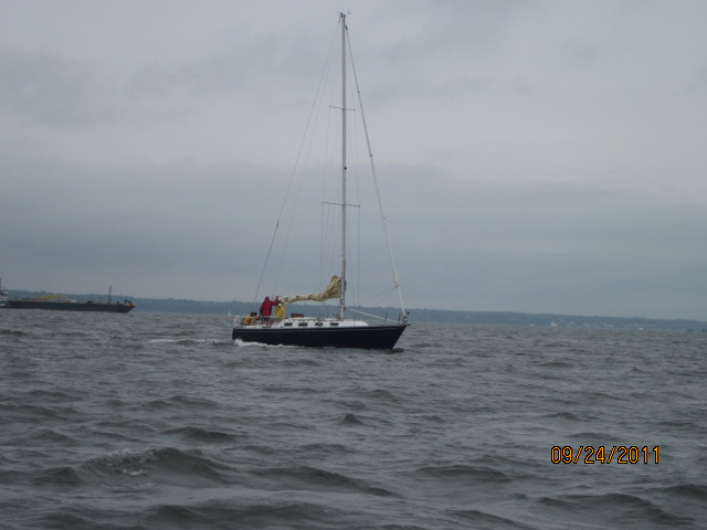 York River Cup Race 2011 012