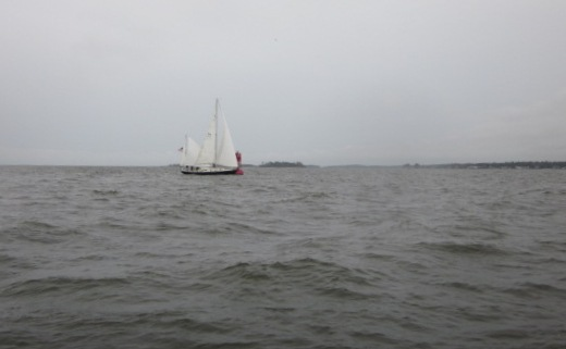 York River Cup Race 2011 118