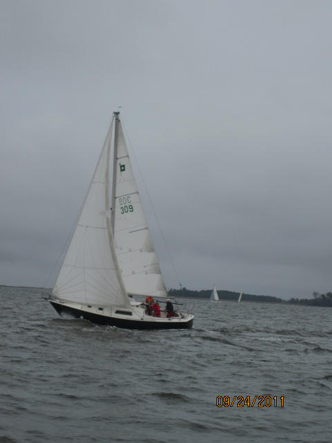 York River Cup Race 2011 150